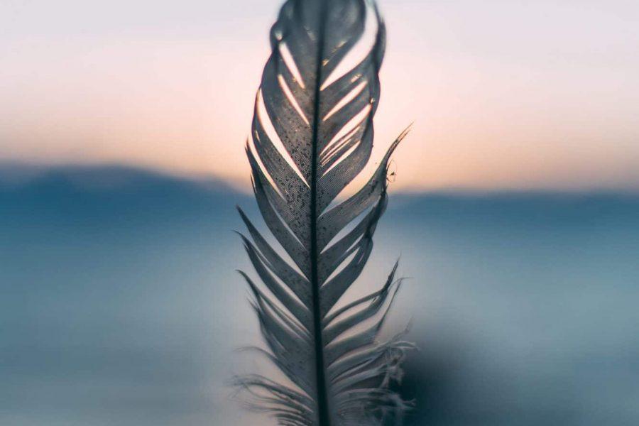 plume meditation